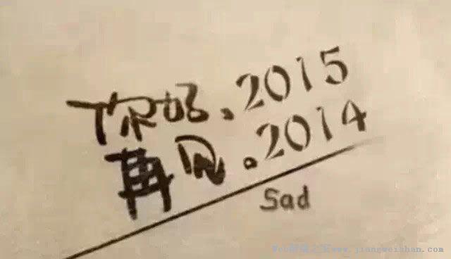 【个人总结】告别2014 展望2015