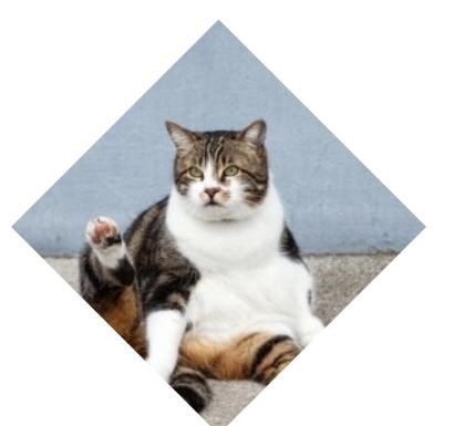 一起来学习如何用<span class='schwords'>CSS3</span>实现菱形图形